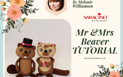 Mr & Mrs Beaver Tutorial
