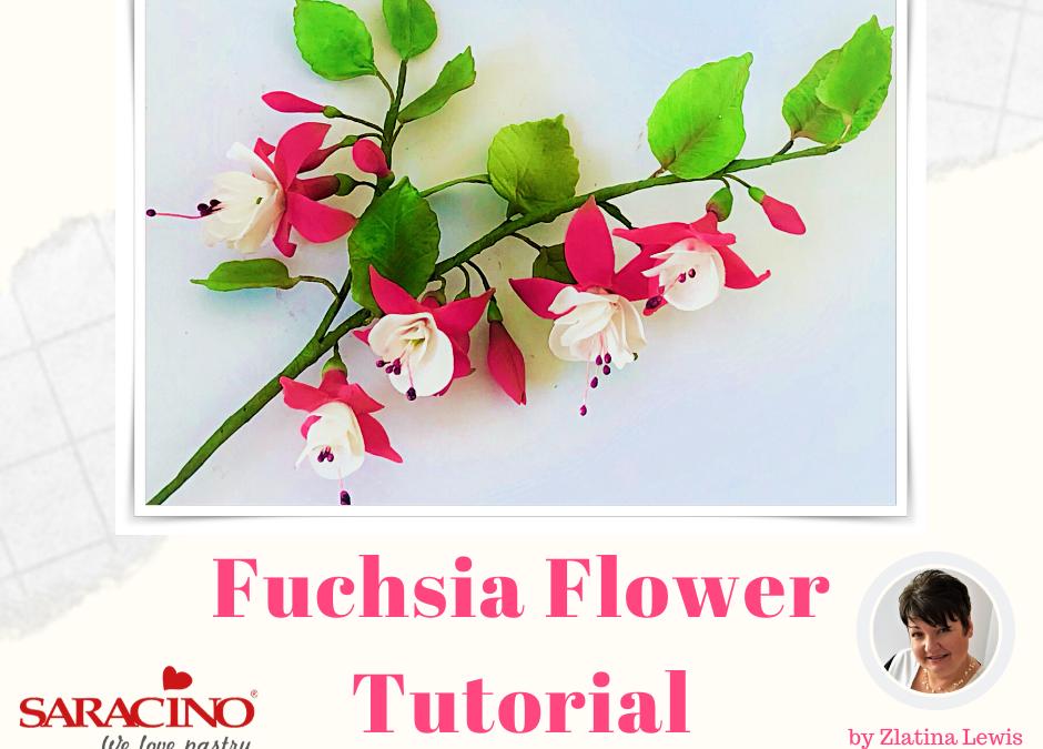 Fiore di Fuchsia